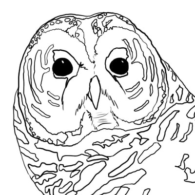 Download And Print Our Owl Coloring Pages Developed By The Centers Own Jo Severson