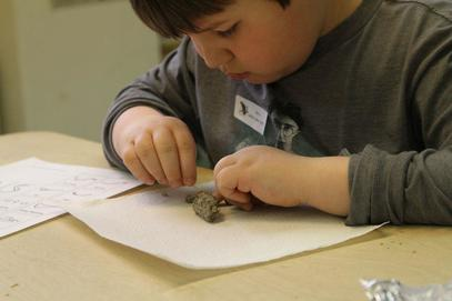 Photo of a young boy picking apart an owl pellet